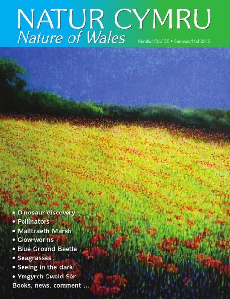 Natur Cymru -55-Summer-2015-cover