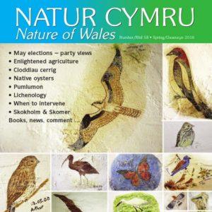 Natur Cymru Issue 58