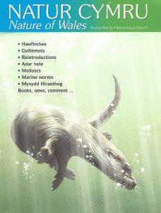 Natur Cymru cover issue 61